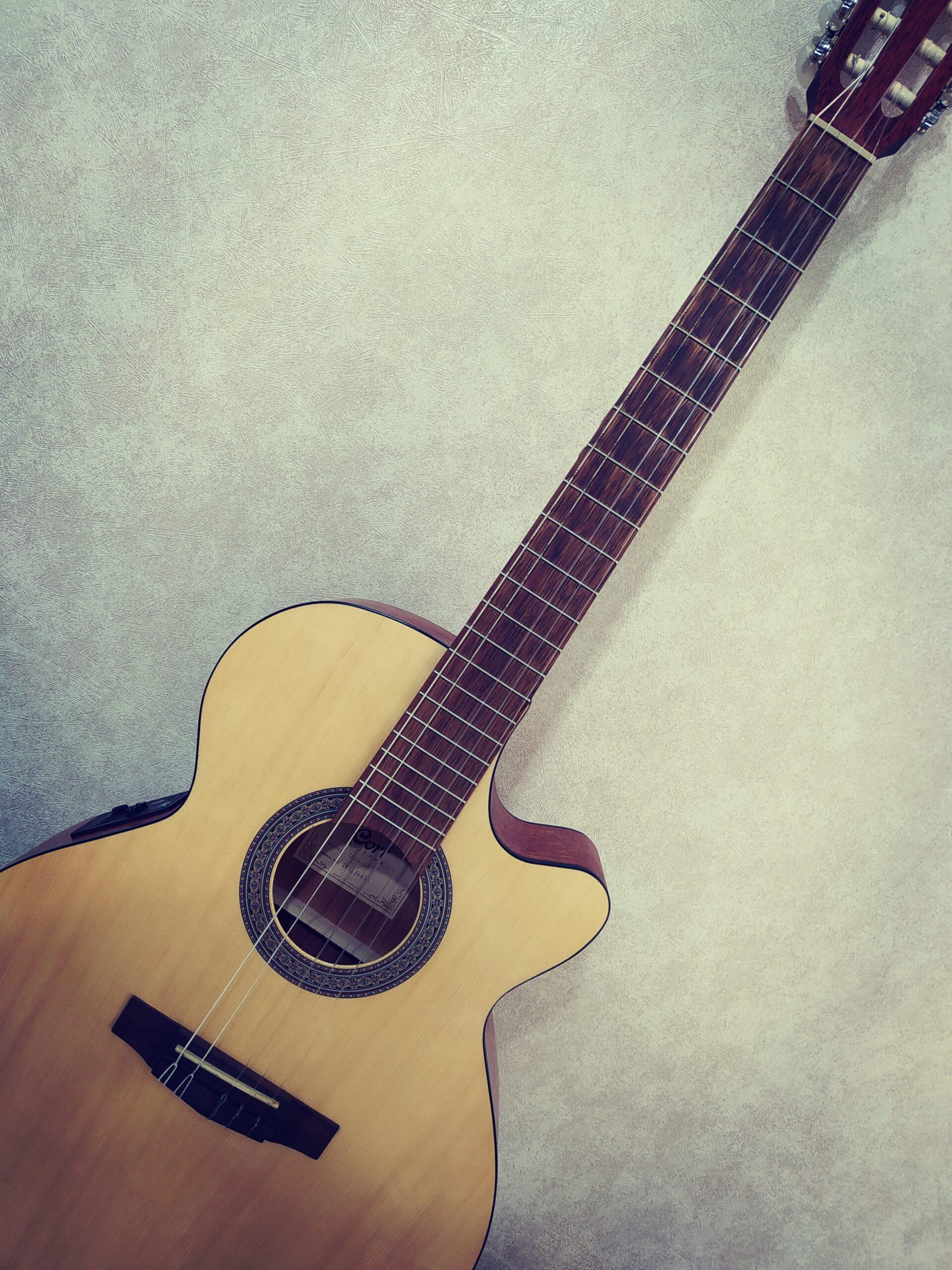 gitar resmi
