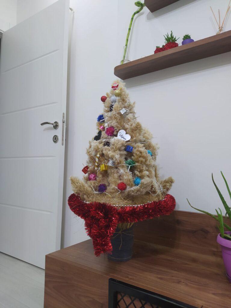Pampaslardan Yılbaşı Ağacı Yapımı